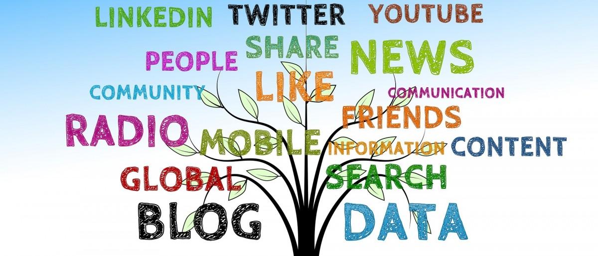 Permalien vers:Réseaux sociaux